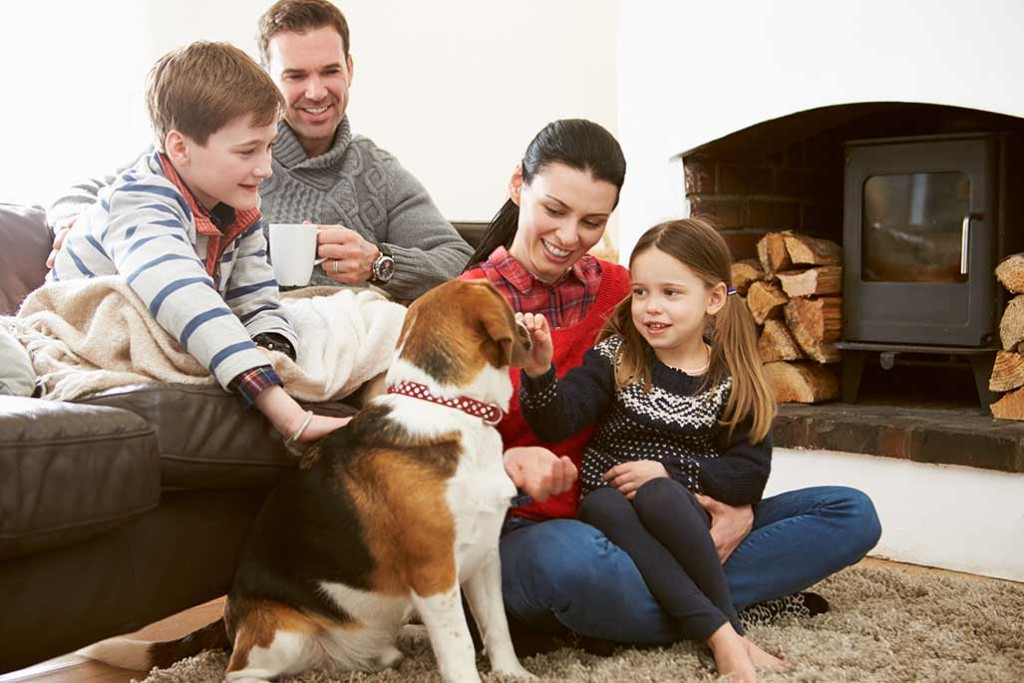 pet-holiday-dog-family-winter